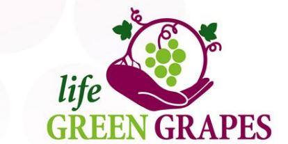 LIFE GREEN GRAPES